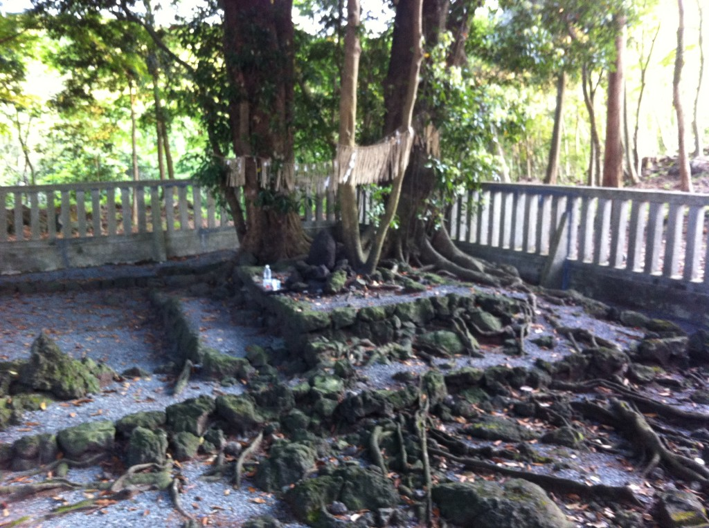 山宮浅間神社10